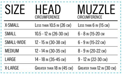 Rex Specs Size Chart