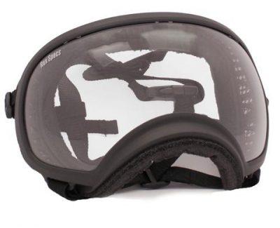 Black Rex Specs