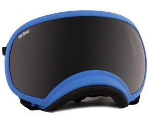 Blue Rex Specs
