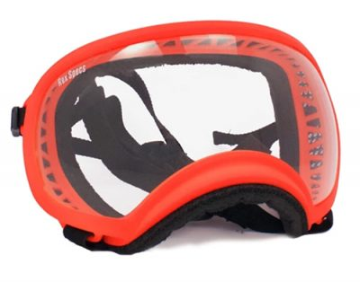 orange rex specs